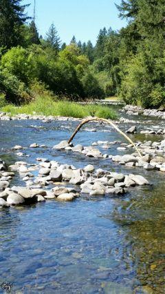 freetoedit unedited river rocks trees