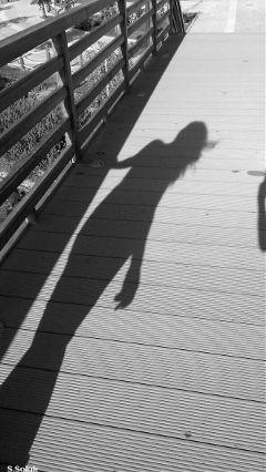dpccastingshadows freetoedit blackandwhite monochrome shadow