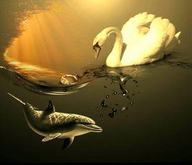 freetoedit sepia goosestickerremix dolphin sunset