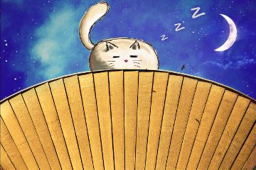 freetoedit cat sleeping night moon