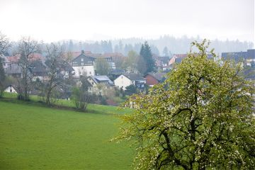germany blackforest travel
