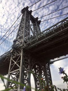thebigapple freetoedit newyorkcity williamsburgbridge lowangle