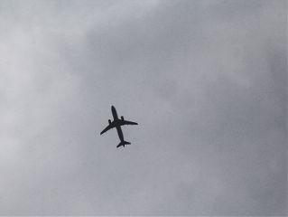 freetoedit gray plane sky