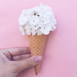 interesting icecream flower pink tumblr freetoedit