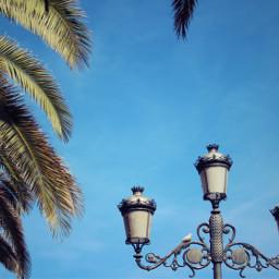 streetlamp ironartwork classiclook retrostyle dove