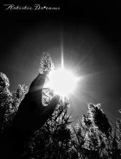 dpcblackandwhite blackandwhite hand sun monochrome