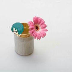 freetoedit chibi flower