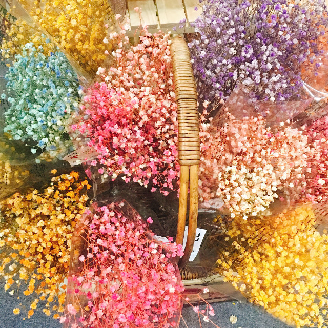 #baby'sbreath #gypsophila #flower #colorful I knew the name in english just. It has a great name. In korean, The fower meaning is fog flower. I think it is as like as fog. Thay are wonderful dried flowers with a lot of colors.