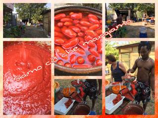 salsapomodoro pomodorifreschi wletradizioni cucinasana freetoedit