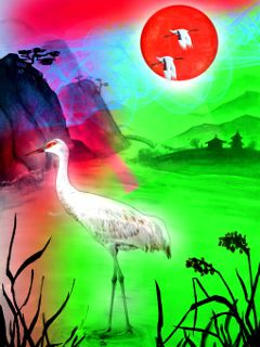 cranes birds colorflare editedbyme freetoedit