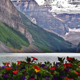 lakelouise banffnationalpark lanscape mountain