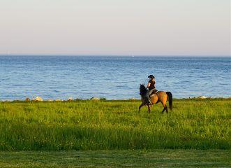 freetoedit nature ocen horse woman