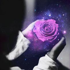 flower rose purple galaxy space freetoedit