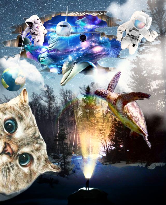 #freetoedit #cat #catday #catstickerremix #kitty #photobomb #space #surreal #imagination #sky #flying #astronauts #turtle #sea #creatures #funny #amusing #picsart #layers #myremix @pa @freetoedit