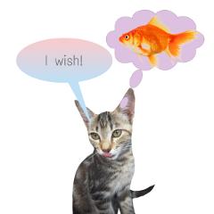 freetoedit cat
