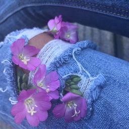 legs jeans mydaugther flowers originalphoto dpcdenim freetoedit