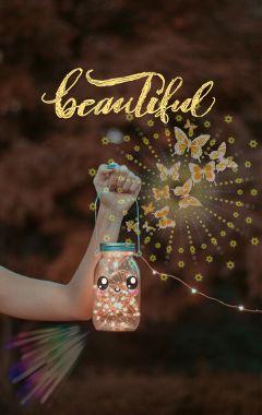 butterflies pretty beautiful cursive craftymomma freetoedit