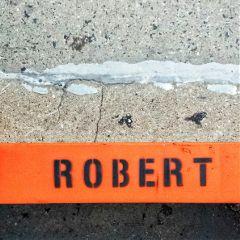 freetoedit robert orange plank