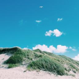 freetoedit denmark beach summer dunes