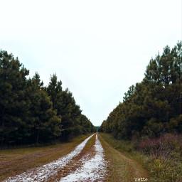freetoedit countryroad rural myoriginalphoto