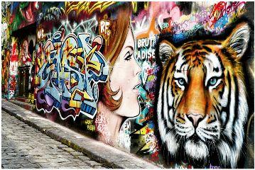 freetoedit streetart streetphotography