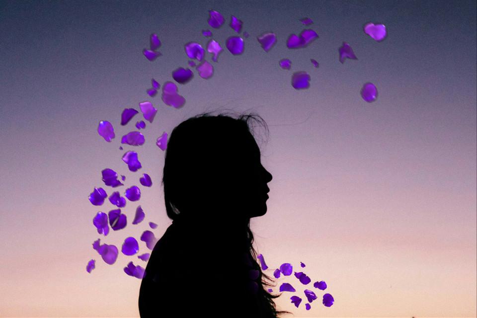 #silhouette #flower #purple