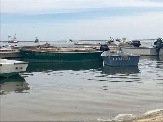 freetoedit boats nofilter noedit