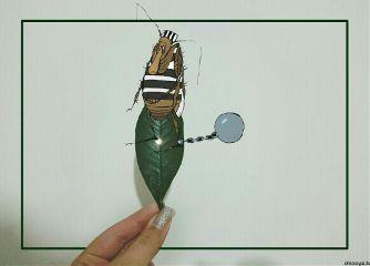 freetoedit costume
