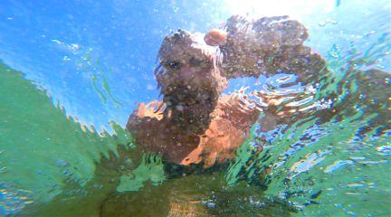 beach wave abovewater selfie