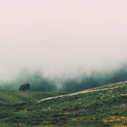 freetoedit landscapephotography landscapelover landscape_captures landscapes