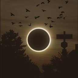 solareclipseremix myphotography silhouette eclipse2017 freetoedit