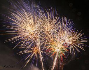 firework feuerwerk berlin pyrotalia pyrotalia2017