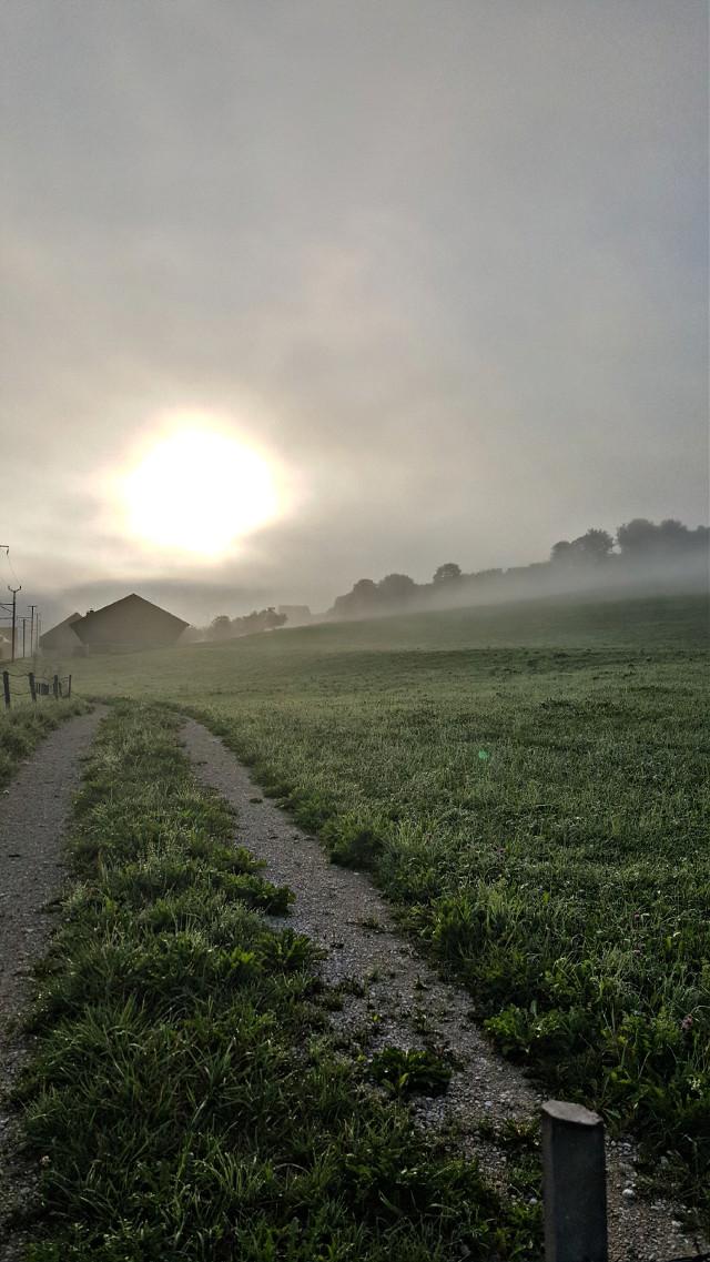 #sunrise #foggymorningsunrise #field #farm #path
