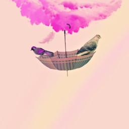freetoedit cloud pink_style love_fantasy