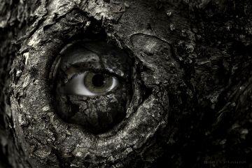 deeliriouss nature darkart emotions photography