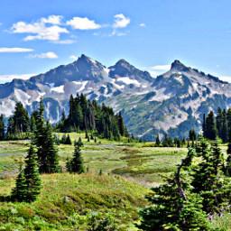 mountains forest nationalpark wildflowers hikingadventures