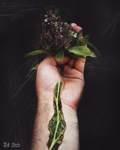 inmyhand doubleexposure doubleexposurecontest surreal plants