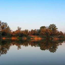 nature lake mirror trees sky
