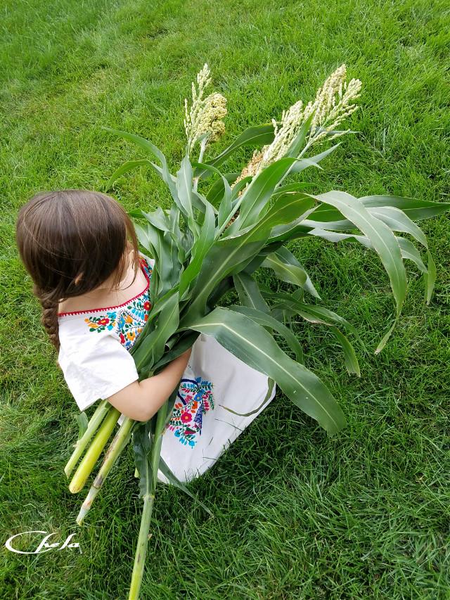 #children #grandchild #innocence #sweetness #cute