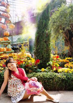 hellofall pumpkins autumn harvest garden freetoedit