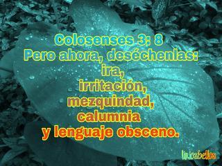 colosenses sendingthewordofyahweh fromcostarica byliriosbellos faith