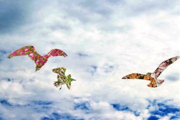 flying seagulls sky doubleexposure flowers freetoedit