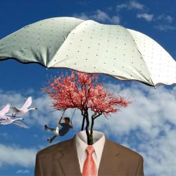 umbrellaremix surreal freetoedit