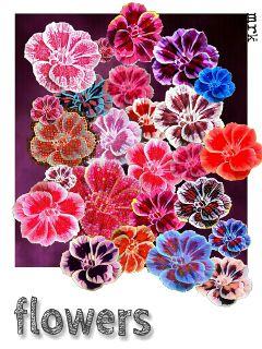 freetoedit flower edited colorful retro