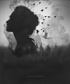 freetoedit blackandwhite woman silhouette nature