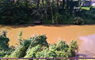 oilpaintingeffect river brown nature