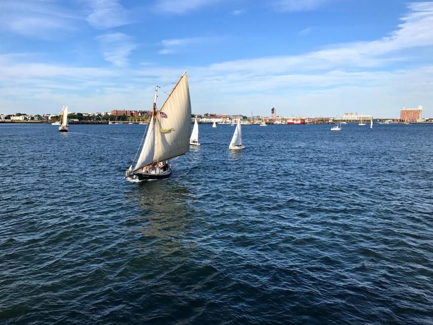 #freetoedit #sail #sea #motion #boats #highangle