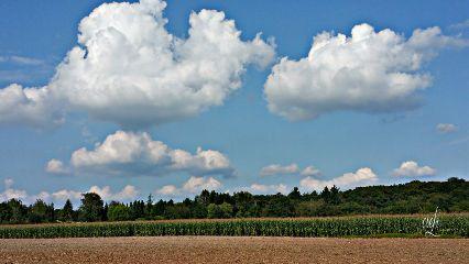 landscape latesummer @csefi naturephotography nature