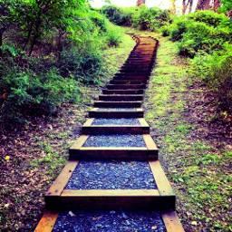 freetoedit stairs stairways interesting nature