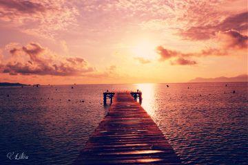 landscape nature sunrise freetoedit